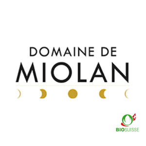 logo domain Miolan